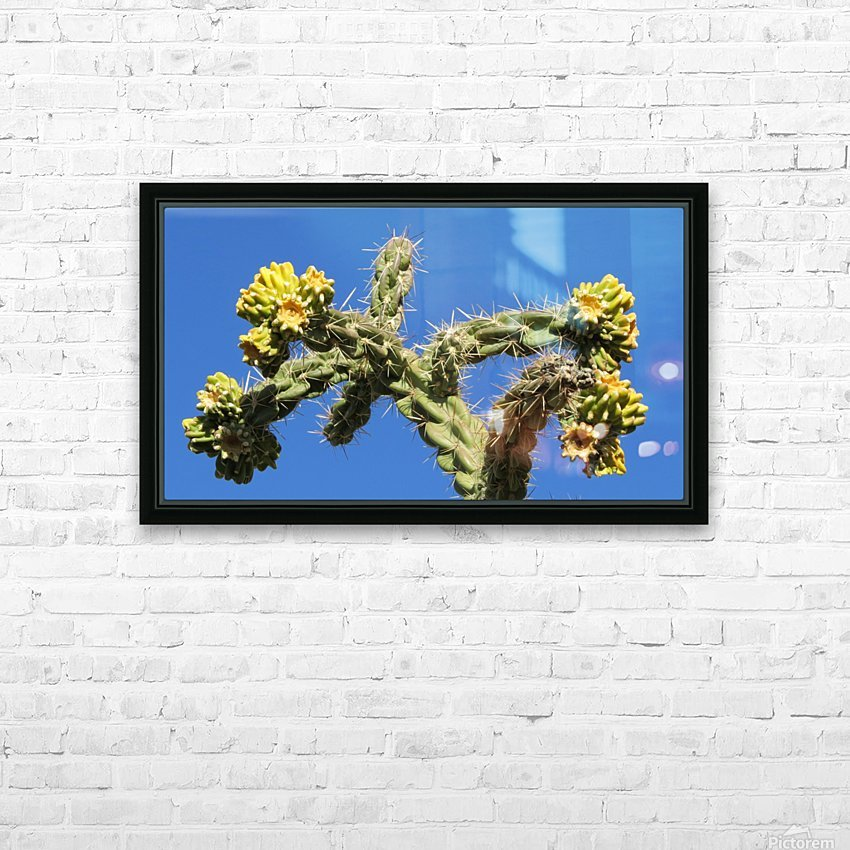 Cactus in bloom HD Sublimation Metal print with Decorating Float Frame (BOX)