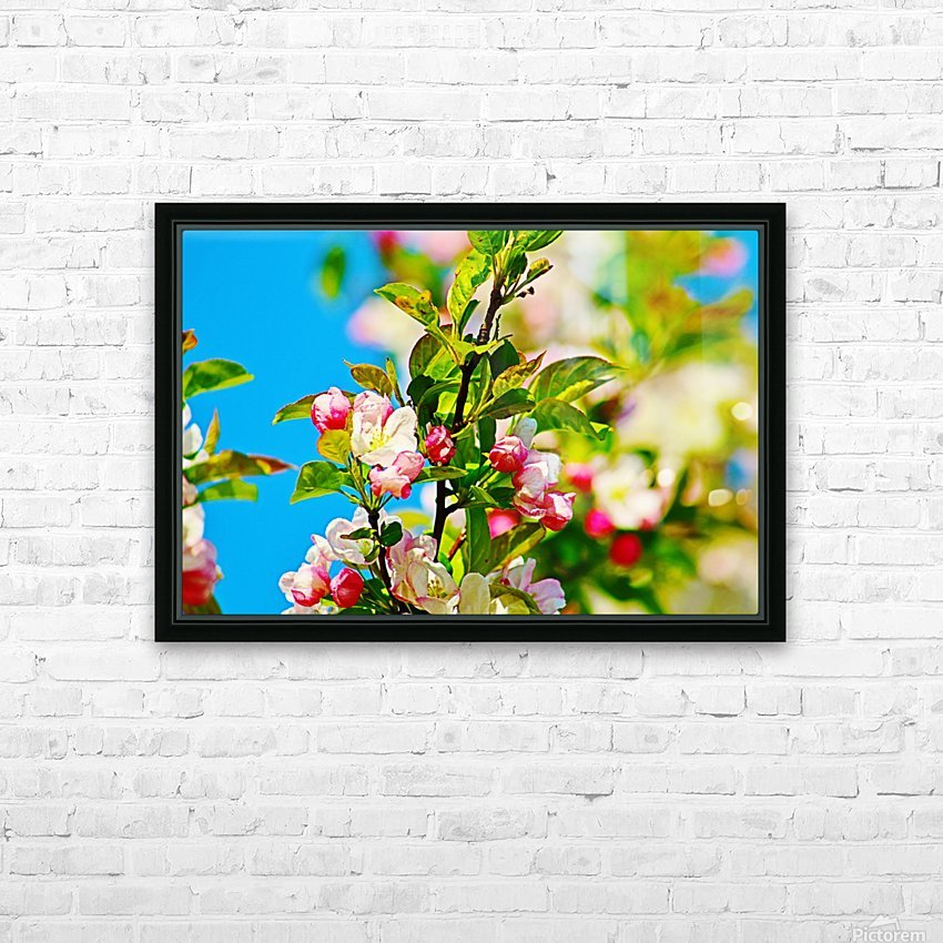 Colors of Spring HD Sublimation Metal print with Decorating Float Frame (BOX)