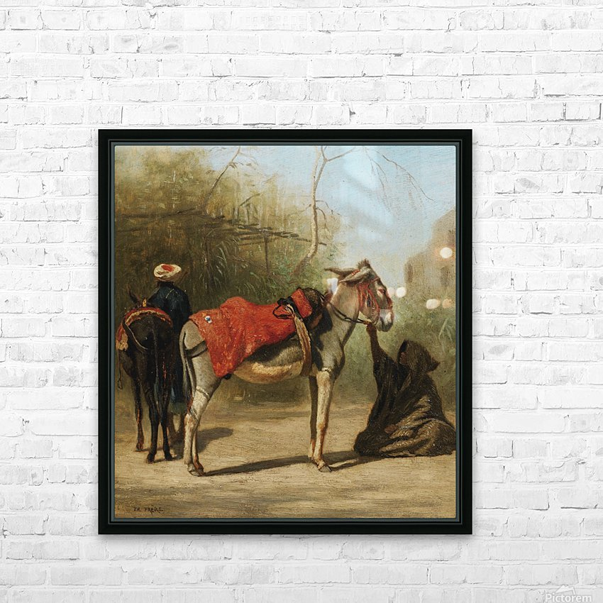 Donkeys in Cairo HD Sublimation Metal print with Decorating Float Frame (BOX)