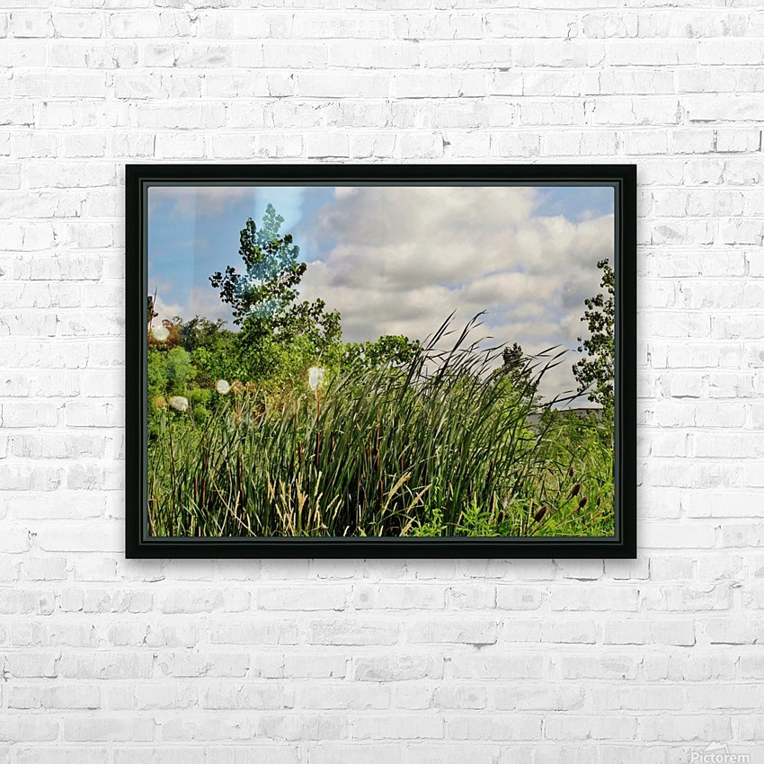 Cattails In The Wind HD Sublimation Metal print with Decorating Float Frame (BOX)