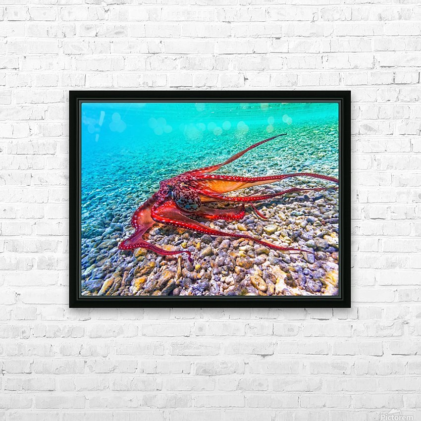 Tako run HD Sublimation Metal print with Decorating Float Frame (BOX)