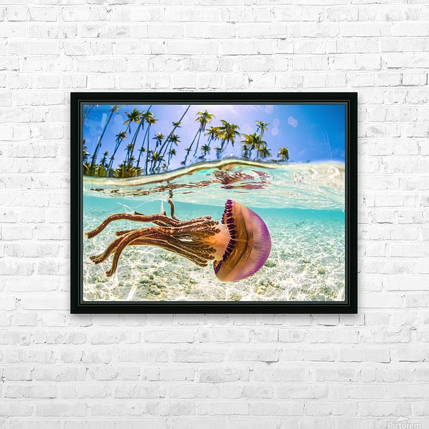 Stow Away HD Sublimation Metal print with Decorating Float Frame (BOX)
