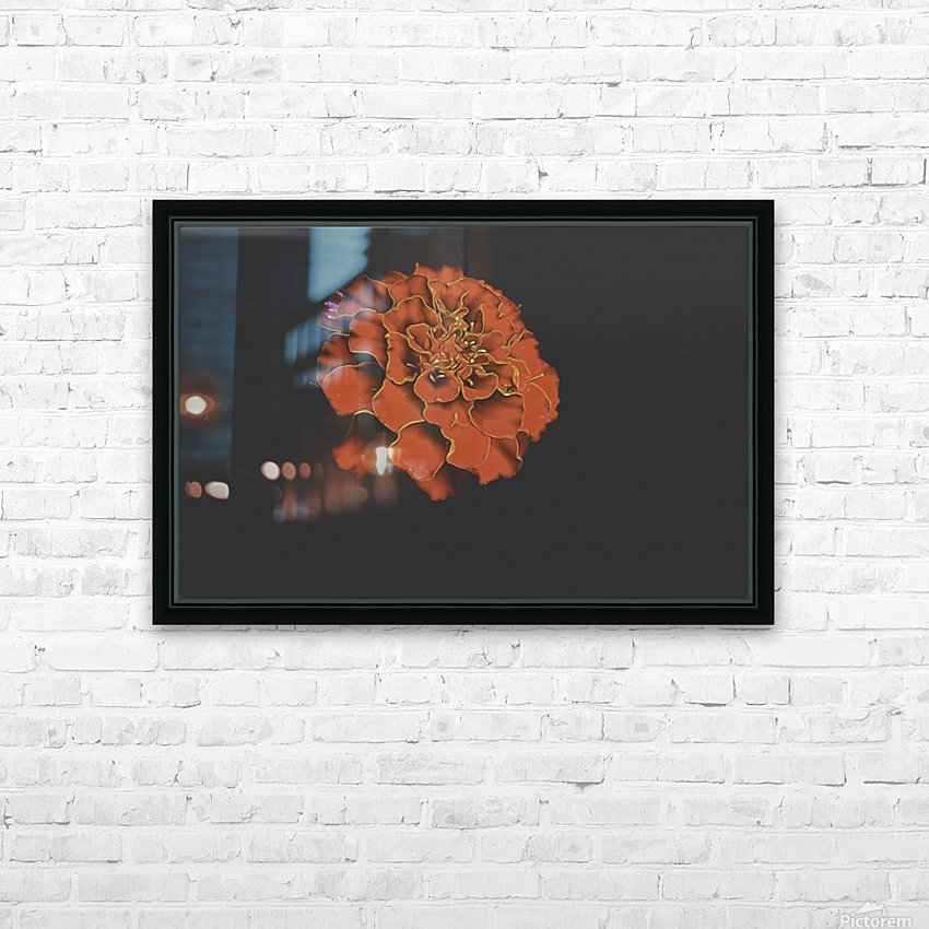 Carnation Bliss HD Sublimation Metal print with Decorating Float Frame (BOX)