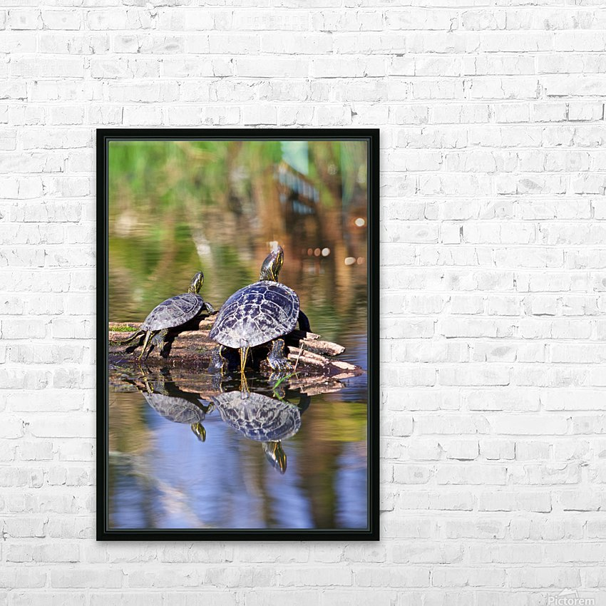 Turtle reflections portrait HD Sublimation Metal print with Decorating Float Frame (BOX)