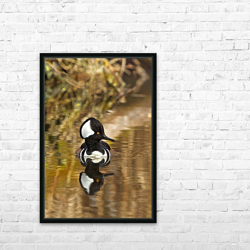 Hooded Merganser Drake Reflection-portrait HD Sublimation Metal print with Decorating Float Frame (BOX)