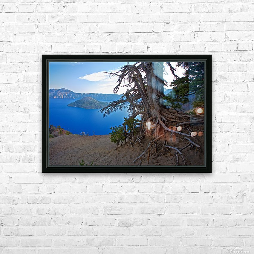 Gnarled White Pine overlooking Crater Lake Aug 2015 HD Sublimation Metal print with Decorating Float Frame (BOX)