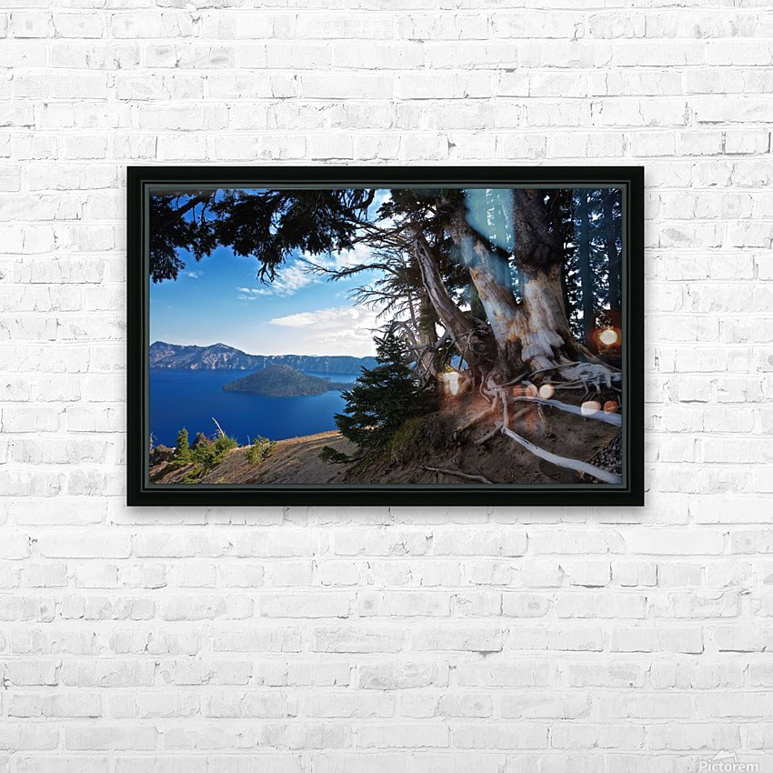 Crater Lake & Gnarled White Pine HD Sublimation Metal print with Decorating Float Frame (BOX)