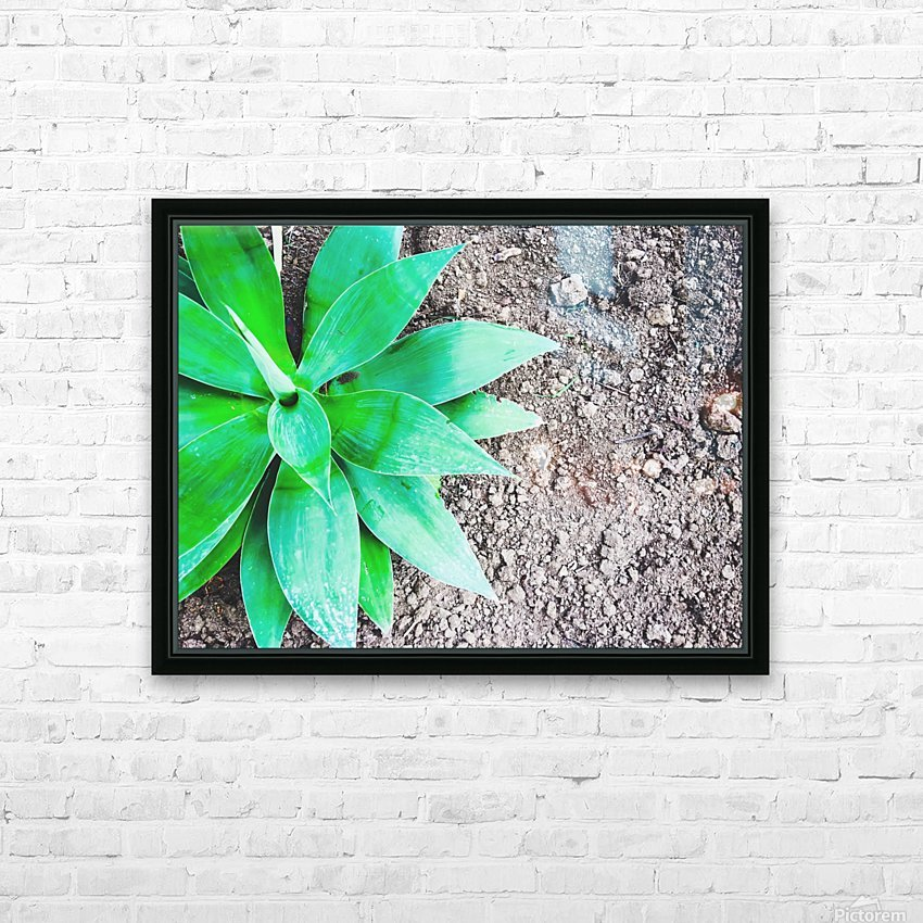 green leaf plant with sand background HD Sublimation Metal print with Decorating Float Frame (BOX)