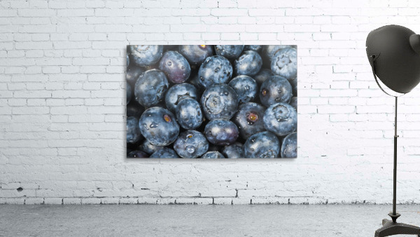 Close up shot of several fresh blueberries.