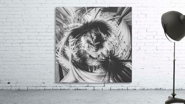 spiral palm leaves abstract background in black and white