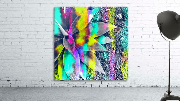 succulent plant with painting abstract background in green pink yellow purple