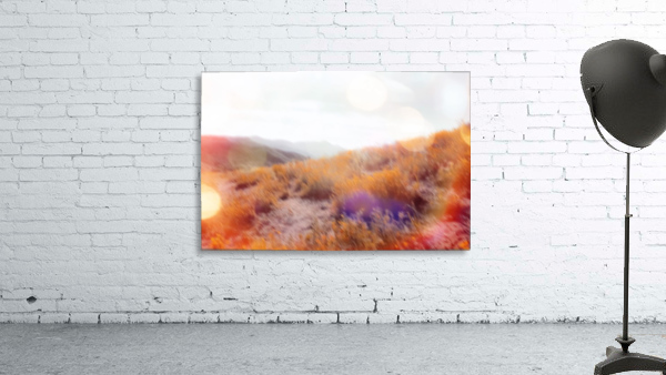 yellow flower field on the mountain with summer light bokeh abstract