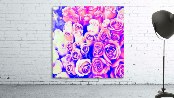 bouquet of roses texture pattern abstract in pink and purple
