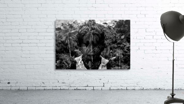 Guyana Child of the jungle