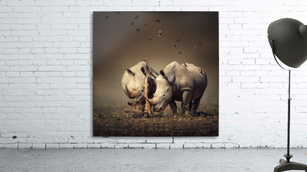 Two Rhinoceros with birds