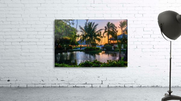 Multicolored tropical dawn with pond and palm trees, white pelican