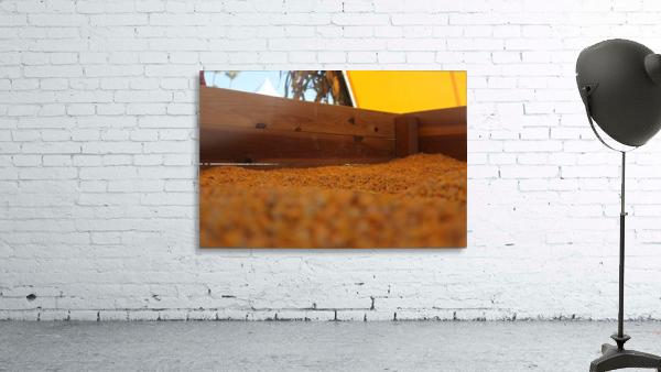Dried Corn 02
