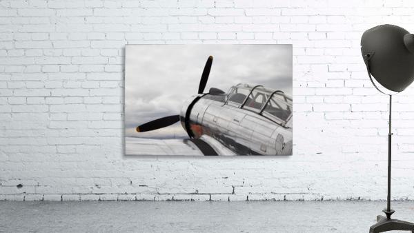 P-53 Nose
