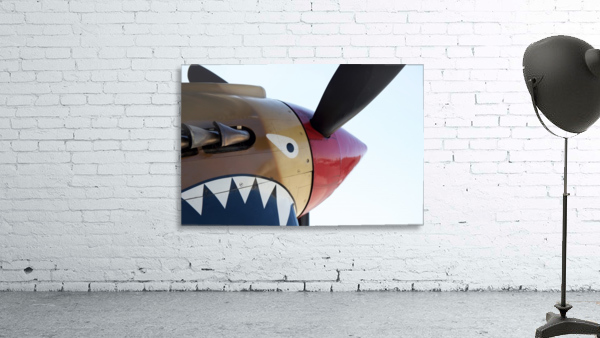 P-40 Warhawk Nose