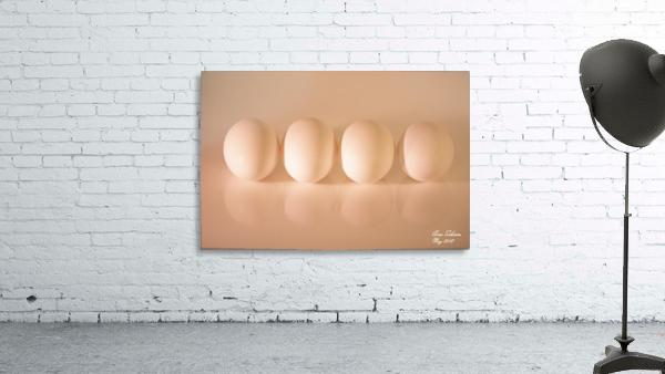 White Egg On Canvas warm light version