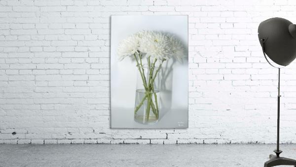 Mum Flower in a Vase