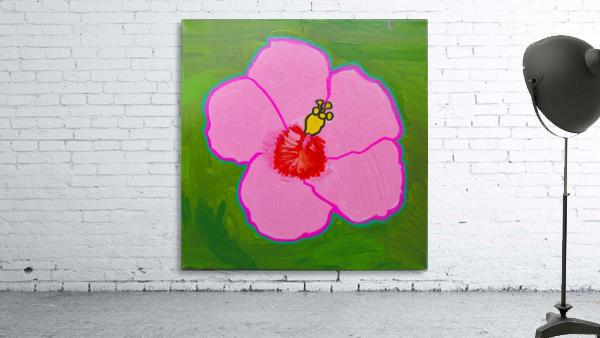 Hibiscus. Annie F