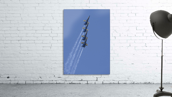 U.S. Navy flight demonstration squadron the Blue Angels.