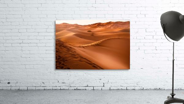 desert, morocco, sand dune, dry, landscape, dunes, sahara, gobi desert,