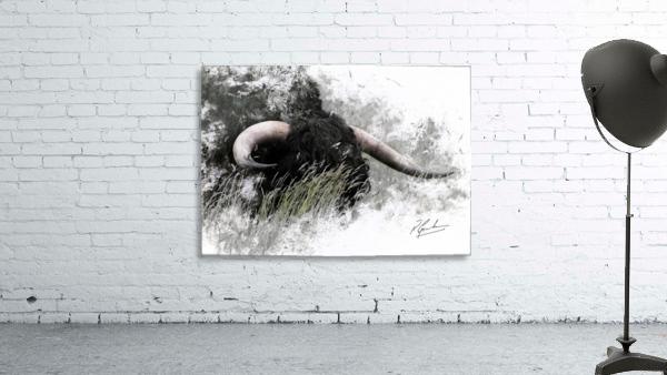Bull in long grass