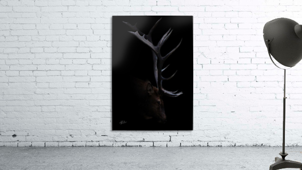 Elk in Black