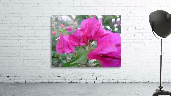 Flowers (47)
