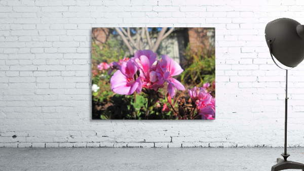 Flower (111)