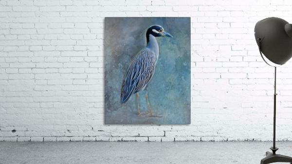 Night Heron Blues