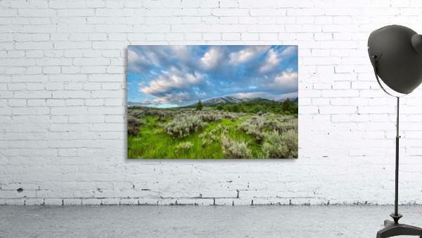 Goodenough Canyon Landscape