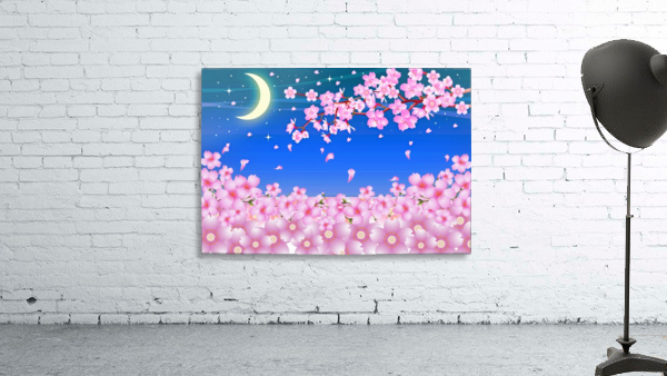 sakura cherry blossom night moon