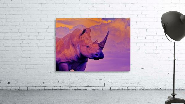 White Rhino orange purple