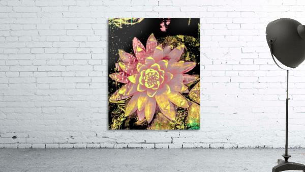Pink fire lotus