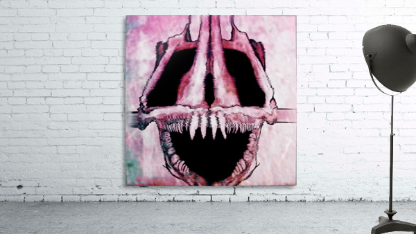 Wolf Eel Skull