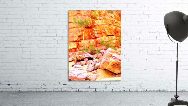 Surviving - Ormiston Gorge