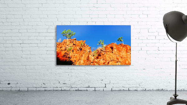 Skyline - Ormiston Gorge