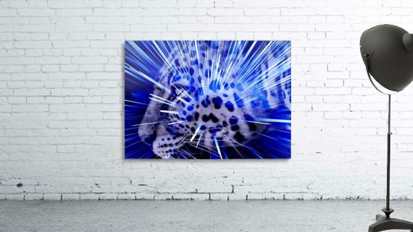 Leopard pop 4