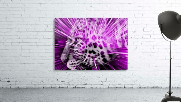 Leopard pop 3