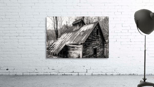 Abandoned Shack 6