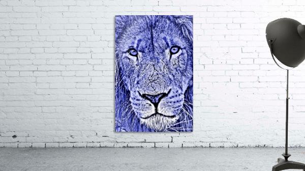 Male Lion Face thula art 5