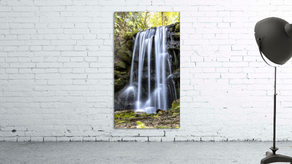 Rainbow Springs Falls