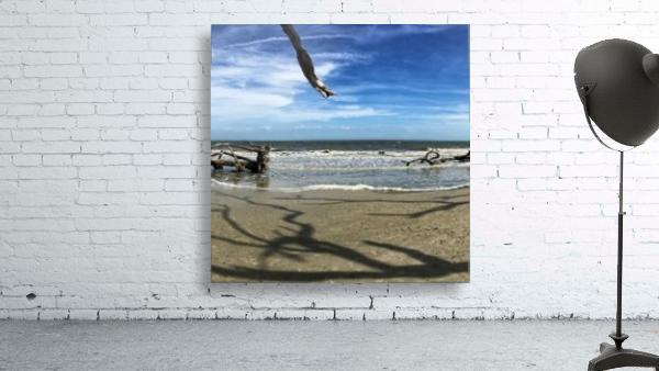 Driftwood Beach Panorama Shadows