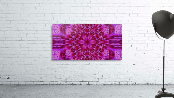 Wildflower in Pink Bloom
