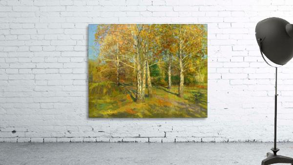 Birch_Trees_In_Tsaritsyno
