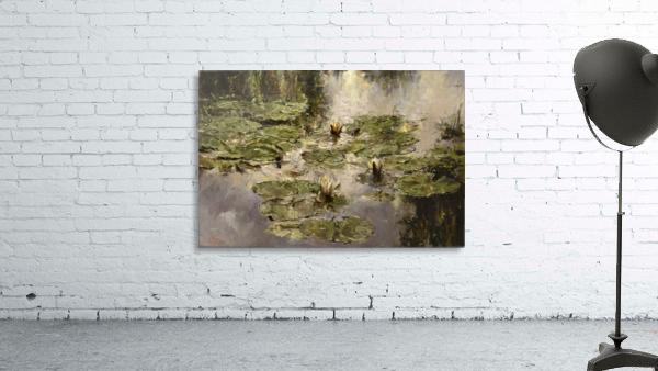 Old_pond