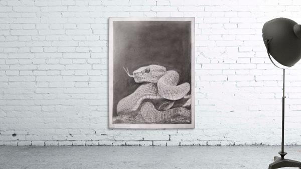 Snake_DKS